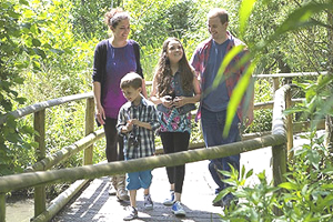 Children explore for free this August at WWT London!